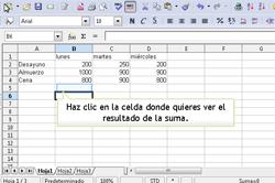Introducir datos en una hoja de cálculo | TIC en Educación Primaria