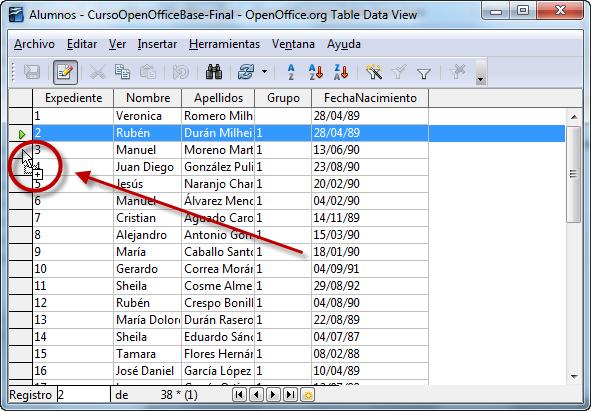Duplicar registros | Bases de datos en la enseñanza
